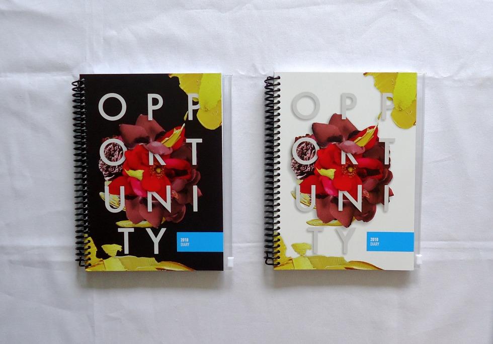 2018 CITSA Diary Cover Art by Tracy